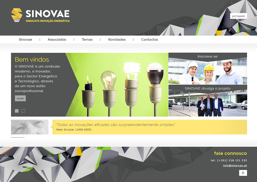 SINOVAE Website
